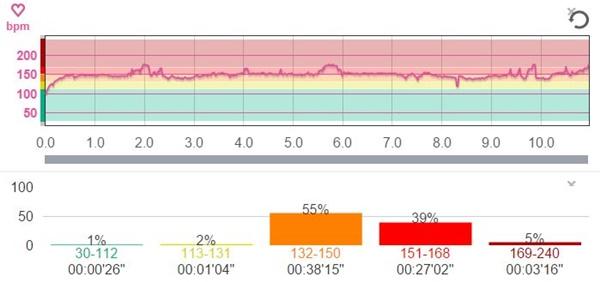 フルマラソンのペースの目安を心拍数基準で測定してみた。
