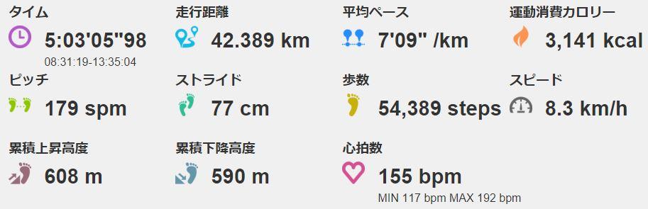 フルマラソン まったく歩かず完走しました。でもタイムは…(;^ω^)